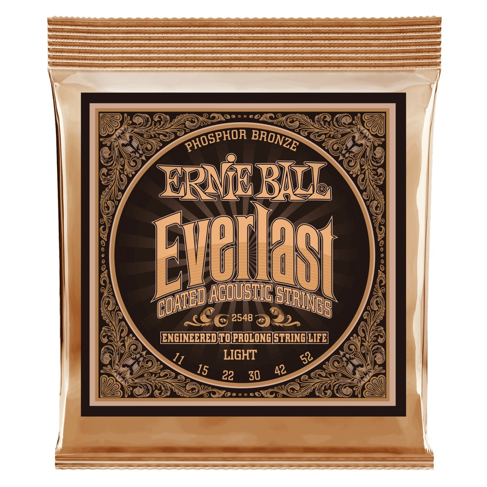 Ernie Ball Everlast Coatet Phosphor Bronze 011 - 052 für Westerngitarre