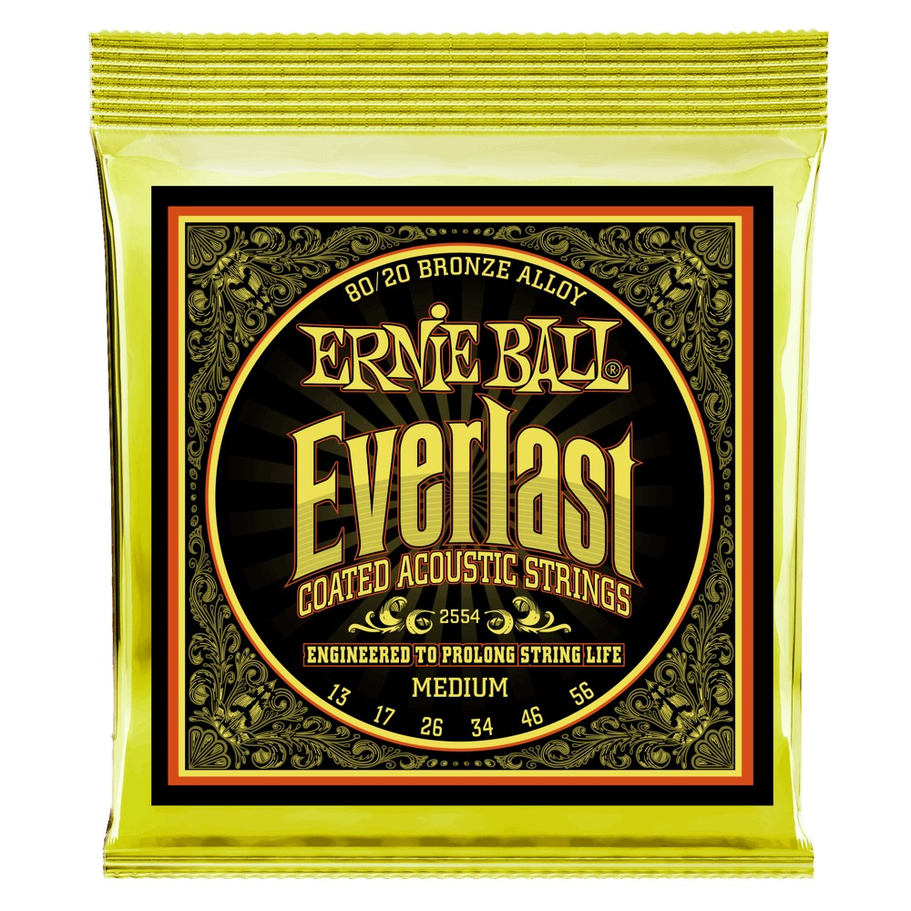 Ernie Ball Everlast Coatet 013 - 056 für Westerngitarre
