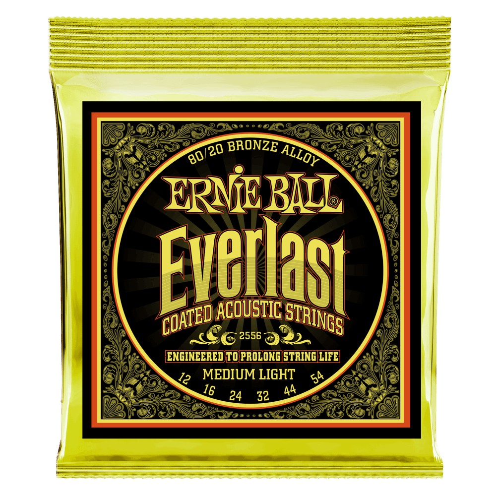 Ernie Ball Everlast Coatet 012 - 054 für Westerngitarre