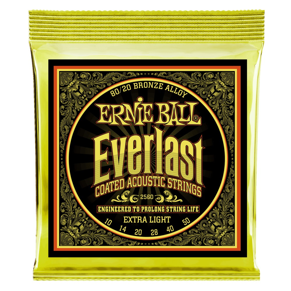 Ernie Ball Everlast Coatet 010 - 050 für Westerngitarre